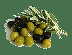 Medfood Olives
